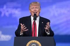 Donald Trump Delusional